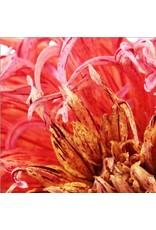 """Art Addiction 40""""x40"""" Flower on Acrylic"""