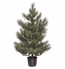 "Napa Home and Garden PONDEROSA PINE PORCH TREE 60""H"