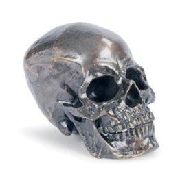 Regina Andrew Skull, Antique Bronze