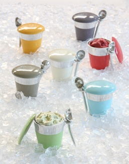Ice Cream Holder with Scoop-Pint, Silver