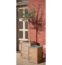 Shuttered Planter Box, Large