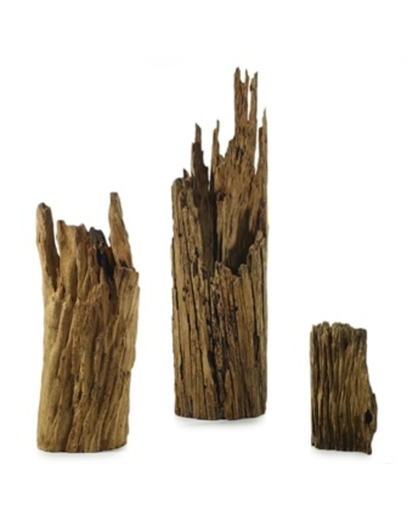 Accent Decor Driftwood Statue