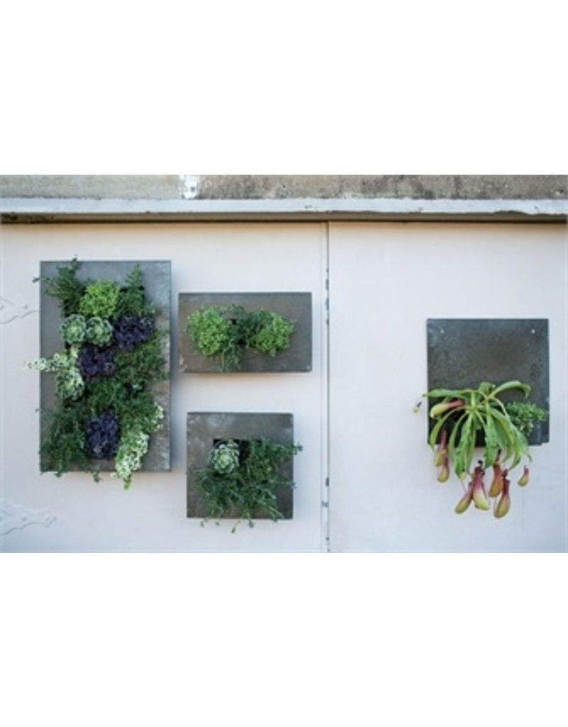 Accent Decor Zinc Wall Planter Considered