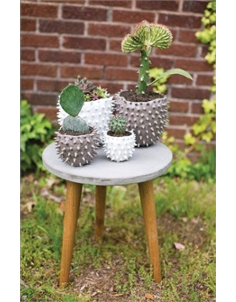 "Accent Decor Cacti Pot, White - 7.25x6.5"""