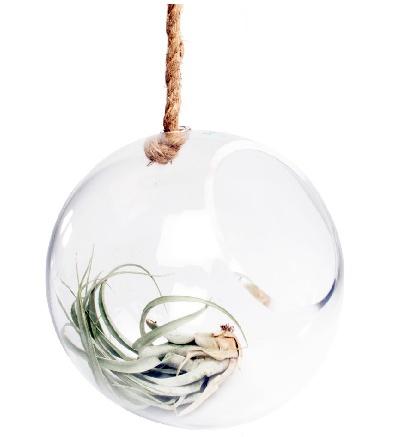 Bolsk - Hanging Sphere