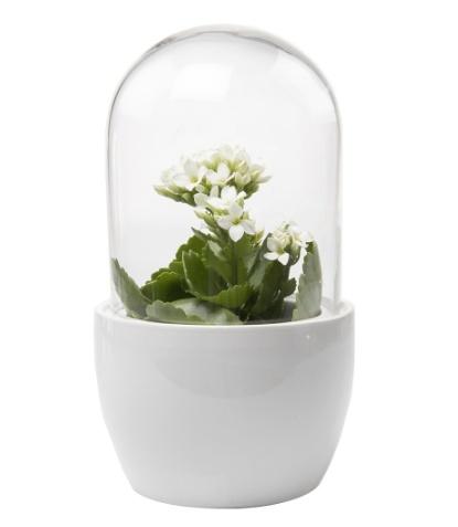 Mini Pill - White