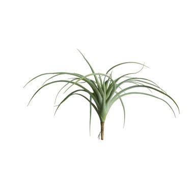 "Tillandsia 14"" - Grey"