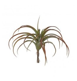 "Gold Leaf Design Group Tillandsia 12"" - Bronze"