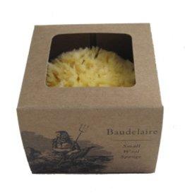 "Baudelaire 4.5"" Natural Sponge, Unboxed"