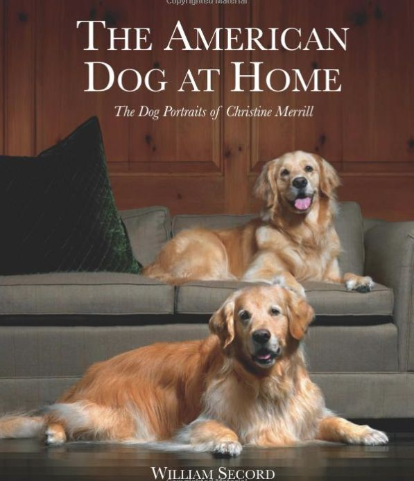 American Dog at Home<br /> The Dog Portraits of Christine Merrill