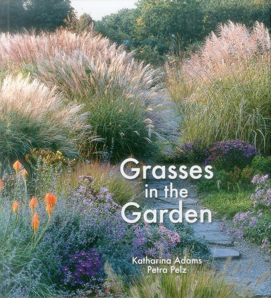 Genial Grasses In The Garden: Design Ideas, Plant Portraits And Care ...
