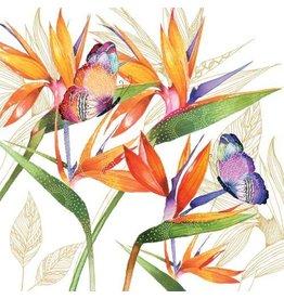 Paper Products Design PARROT FLOWER NAPKINS