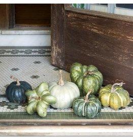 Small Green Heirloom Pumpkin