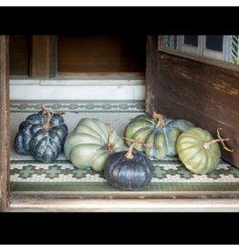 Green Heirloom Pumpkins