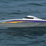 Minimono Brushless Boat TTX300 2.4GHZ RTR