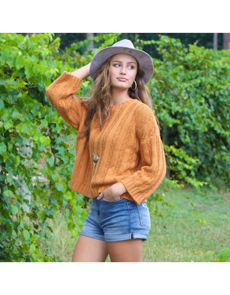Tops 66 Fall Cable Camel Sweater