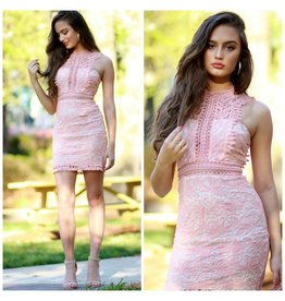 Dresses 22 Blushing Spring Dream Dress