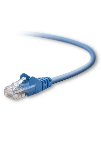 Belkin Belkin Category 5 Ethernet Cable (14')