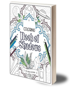 Coloring Book of Shadows - Lee Lee\'s Valise