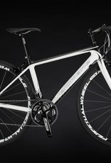 Velomane Velomane 2000 carbone Shimano Claris, roue double jante