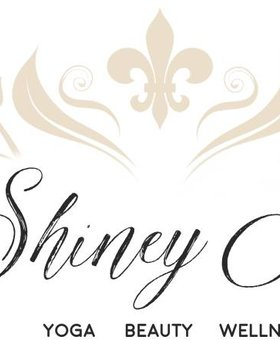 The Shiney Studios Shiney Yoga - One Om (Drop-In)