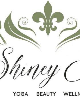 The Shiney Studios Shiney Yoga - Private4Over