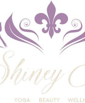 The Shiney Studios Shiney Yoga - Private3Under