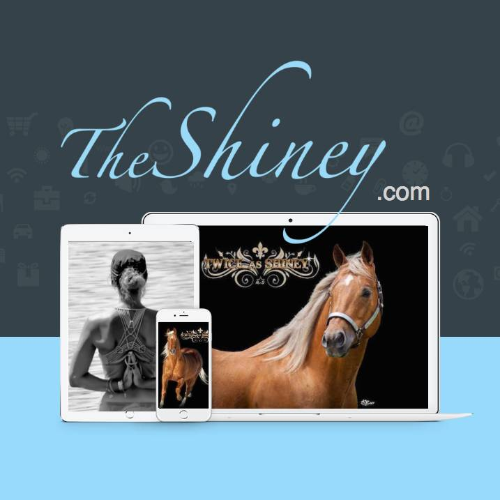 The Shiney Foundation The Twice As Shiney Heart ~ $525 Donation