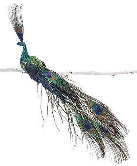 Peacock Bird On Clip Natural feather glitt Sm