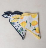 Cotton Muslin Bandana Bib 2 Pack