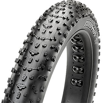 Maxxis Maxxis Colossus 26 x 4.80 Tire, Folding, 120tpi, Dual Compound, EXO, Tubeless Ready