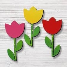 Roeda Studio Dutch Magnets 3 pack 3 different tulips