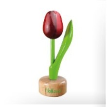 Souvenir Tulip on Pedestal Red/Augergine 8""