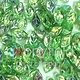 Czech Leaves, 12x7 mm, Peridot AB, 25 pcs