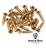Fender Fender Pickguard-Control Plate Mounting Screws (24)-Gold