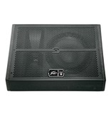 Peavey Peavey SP 12M Floor Monitor