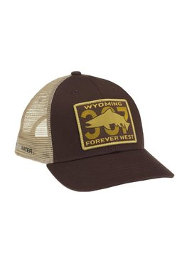 Rep Your Water WYOMING 307 PATCH HAT