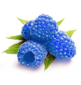 VapinUSA Blue Raspberry