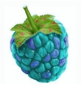 VapinUSA Schnozberry