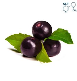 VapinUSA Acai Berry | 30ml | Salt
