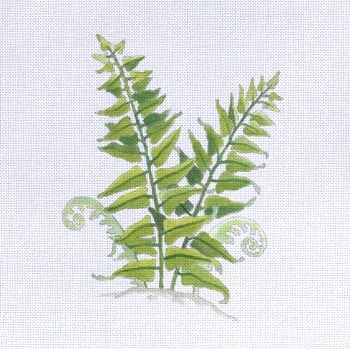 Canvas FERN II  182772