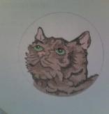 Canvas CAT FACE  ND0105 - SALE<br /> REG 28.00