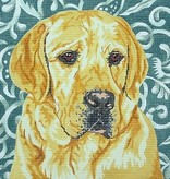 Canvas YELLOW LAB  BR26