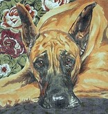 Canvas SALE  -  GREAT DANE BR7<br /> REG $175