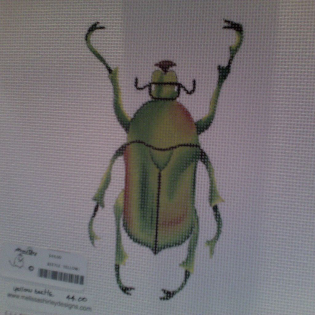 Canvas BEETLE  YELLOW/GREEN  1407B