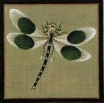 Canvas Black Dot Dragonfly  0904b<br />