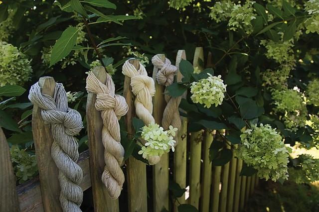 Yarn CANYON - CEY