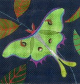 Canvas LUNA MOTH  SQUARE  ZE285