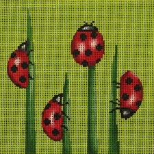 Canvas LADYBUGS  24016B