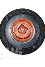 "RAIN BIRD 1800 6"" POP UP SPRAY SAM-PRS"